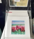 print display.karin luciano
