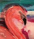 fandango flamingo.karin luciano14